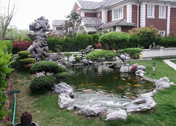 庭院设计假山鱼池