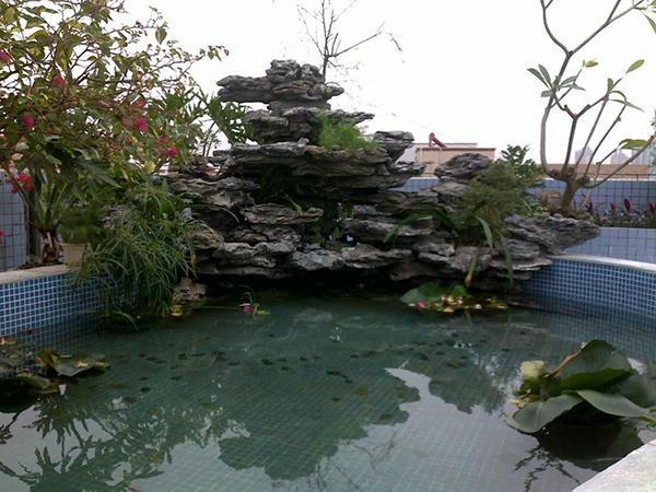 庭院假山鱼池设计图片欣赏